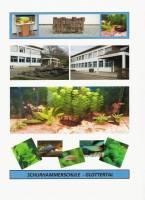 Titelbild des Albums: Schulaquarium der Schurhammerschule Glottertal